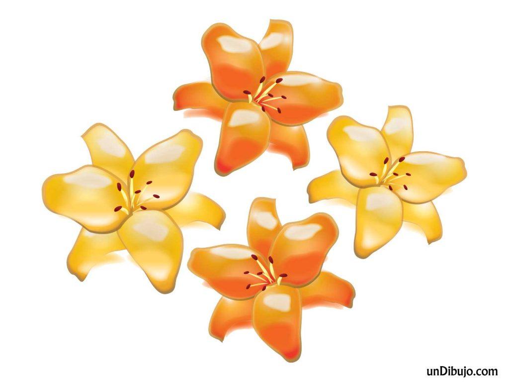 Dibujo de Flores Naranjas para Imprimir