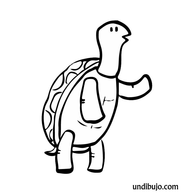 Dibujo de Tortuga en dos patas para colorear