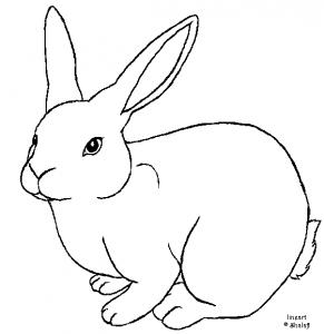 conejo facil para colorear